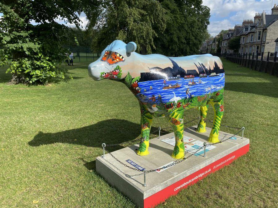 cows about Cambridge, Visit Cambridge, Cambridge Activities, Scavenger Hunt Cambridge, Art Gallery, Charity, Cambridge, Punting in Cambridge