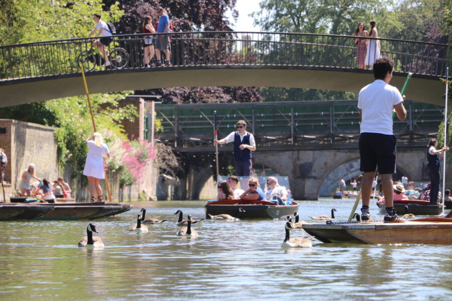 Punting in Cambridge, Punting Cambridge, Punting Tours in Cambridge, Chauffeured Punt Tours, About us, Cheap Punting Cambridge, Discount Punting